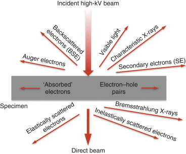 Matter Wave - an overview | ScienceDirect Topics