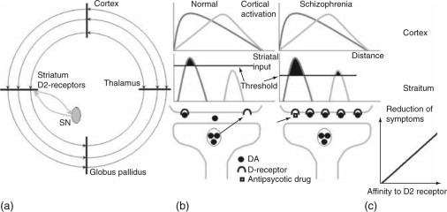 Cocaine-Induced Psychosis - an overview | ScienceDirect Topics