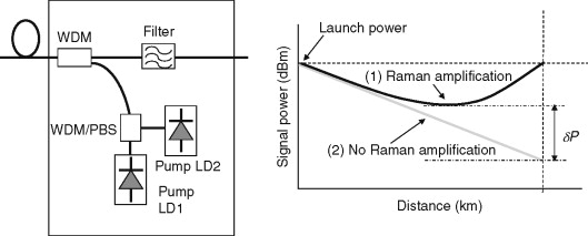 Raman Amplification - an overview | ScienceDirect Topics on