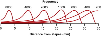 Audibility - an overview | ScienceDirect Topics