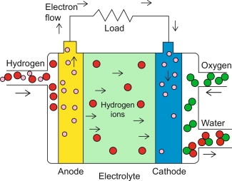 phosphoric acid fuel cell - an overview   ScienceDirect Topics