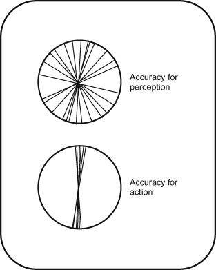 Visual Agnosia - an overview | ScienceDirect Topics
