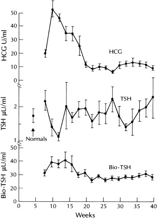 Thyroxine Binding Globulin An Overview Sciencedirect Topics