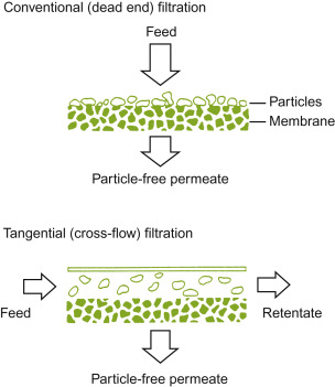 Membrane Filter - an overview | ScienceDirect Topics