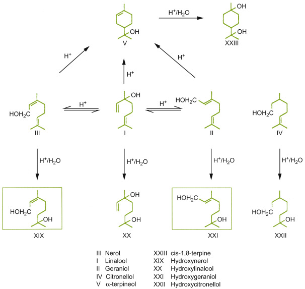 Isobutyl Acetate - an overview | ScienceDirect Topics