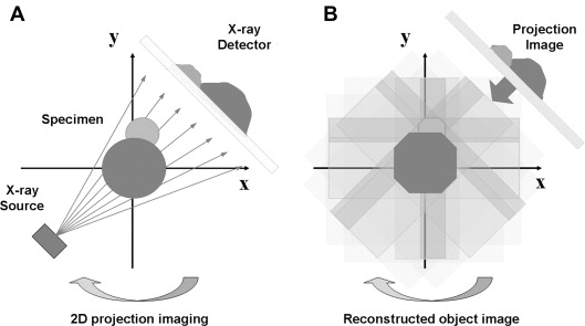 X-Ray Imaging - an overview | ScienceDirect Topics