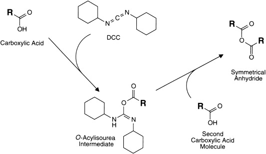 Dicyclohexylcarbodiimide - an overview | ScienceDirect Topics