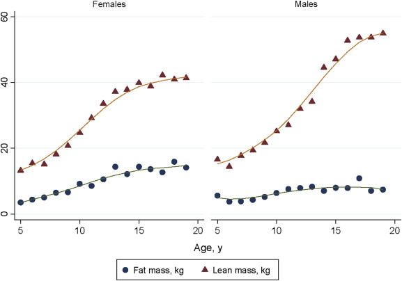 Sexual Maturation - an overview | ScienceDirect Topics