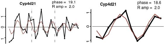 Cyp induction fdating