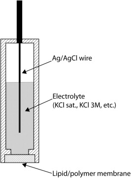 Electrochemical Sensor - an overview | ScienceDirect Topics