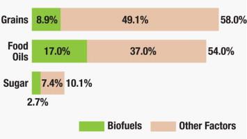 Bioenergy – an overview   ScienceDirect Topics, Alternative Energy Today