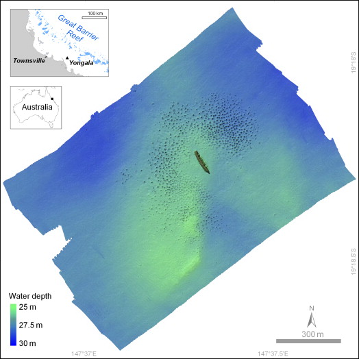 Wreck - an overview | ScienceDirect Topics