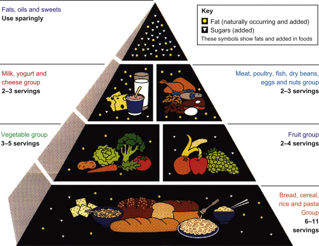 Food Guide Pyramid - an overview | ScienceDirect Topics