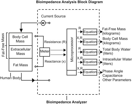 Bioelectrical Impedance Analysis - an overview