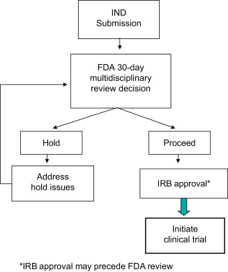The Fda Review Process For Cancer Gene Therapy Sciencedirect
