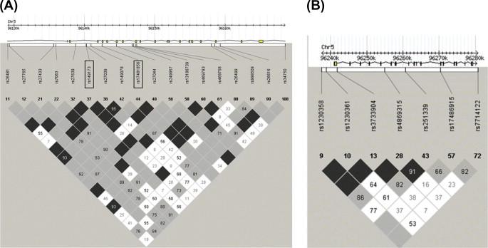 25e7cdde99a Adaptive Immunity and Genetics of the Host Immune Response ...