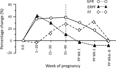Glomerular Filtration Rate - an overview   ScienceDirect Topics