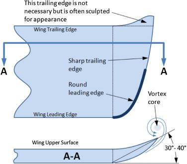 Wingtips - an overview | ScienceDirect Topics