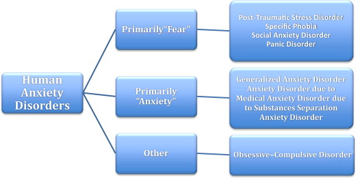 Classification of Anxiety Disorder - an overview