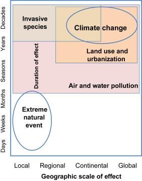 environmental biotechnology vallero daniel