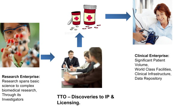 Licensing the Technology: Biotechnology Commercialization