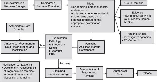 Morgue - an overview | ScienceDirect Topics