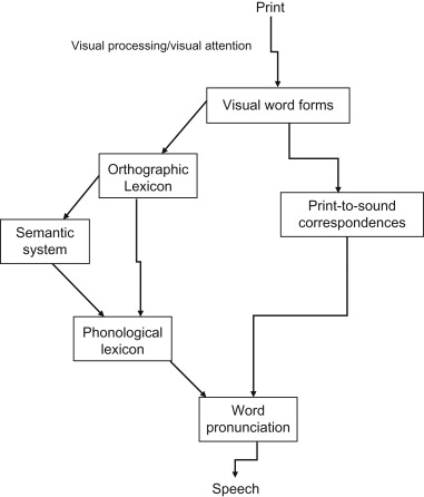 Dysgraphia - an overview | ScienceDirect Topics