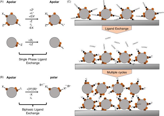 Ligand Exchange Reaction An Overview Sciencedirect Topics
