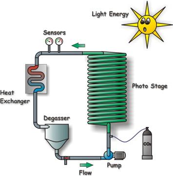 Photobioreactor An Overview Sciencedirect Topics