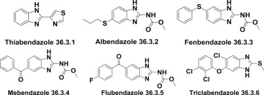 Mebendazole - an overview | ScienceDirect Topics