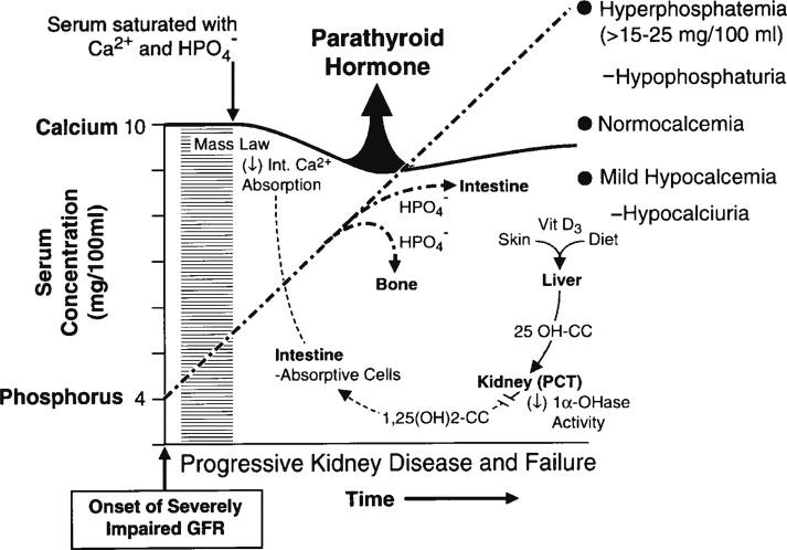 Secondary Hyperparathyroidism - an