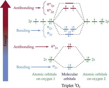 Molecular Orbitals - an overview   ScienceDirect Topics