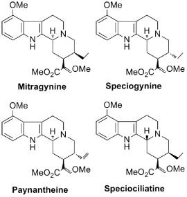 Psychoactive Plant - an overview | ScienceDirect Topics