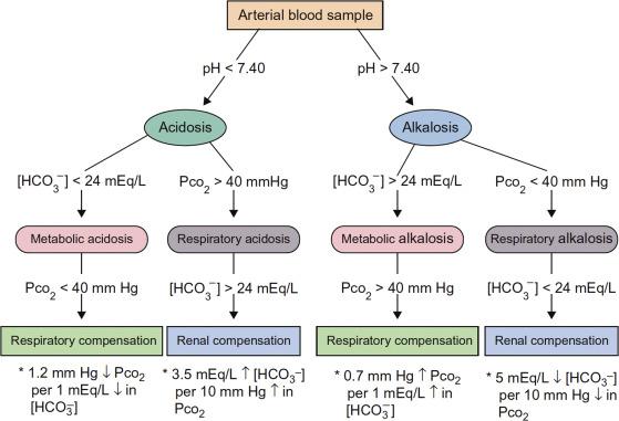 Acid Base Imbalance An Overview Sciencedirect Topics