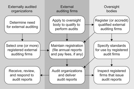 External Auditing An Overview ScienceDirect Topics
