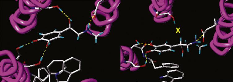 Optical Isomerism in Drugs - ScienceDirect