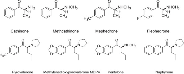Pyrovalerone - an overview | ScienceDirect Topics