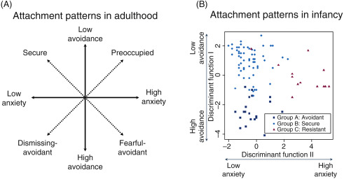 Anxious-Avoidant - an overview | ScienceDirect Topics