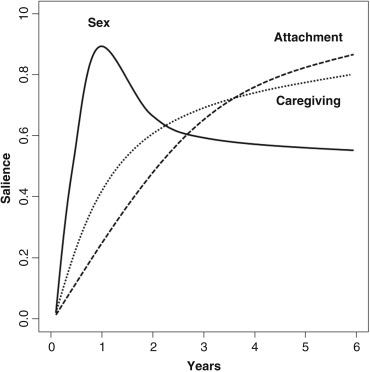 Adult Romantic Attachment - an overview | ScienceDirect Topics