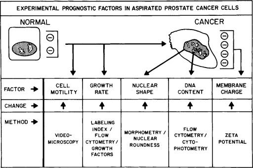 Prostatitis fsh lg