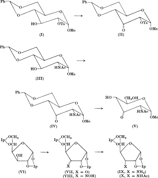 Oxidation of Carbohydrates with Dimethyl Sulfoxide