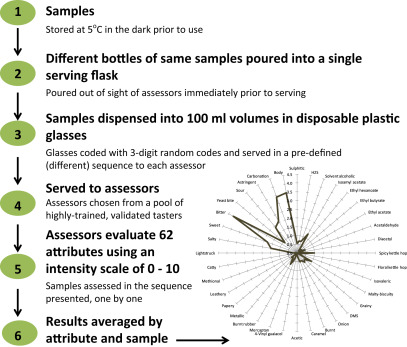 Descriptive Analysis - an overview | ScienceDirect Topics