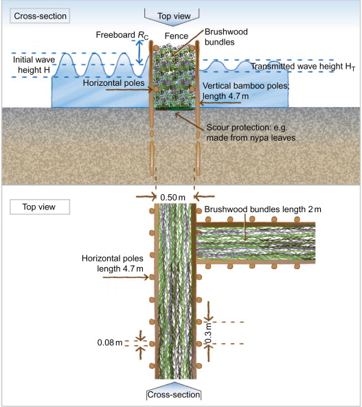 Area Coastal Protection and the Use of Bamboo Breakwaters in the
