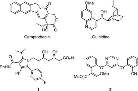 Bioactive Heterocyclic Compound Classes: Pharmaceuticals