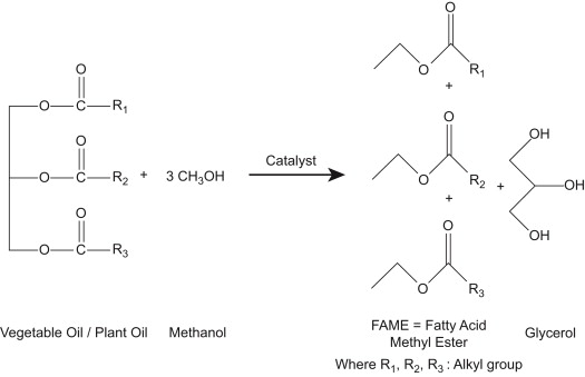 Transesterification - an overview | ScienceDirect Topics