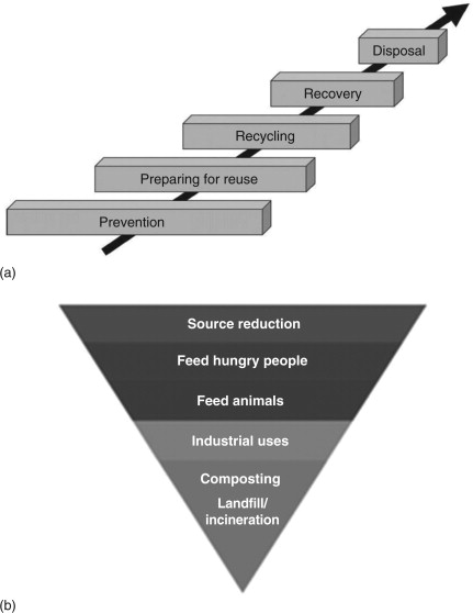Food waste management, valorization, and sustainability in