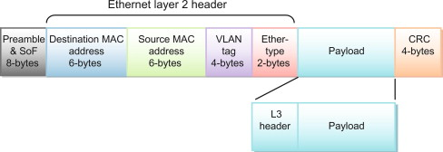 Ethernet Header - an overview | ScienceDirect Topics