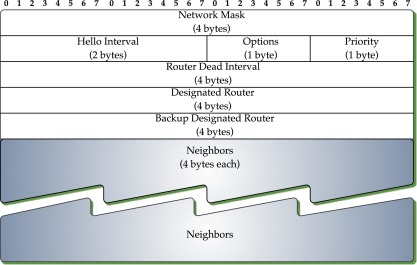 Designated Router - an overview | ScienceDirect Topics