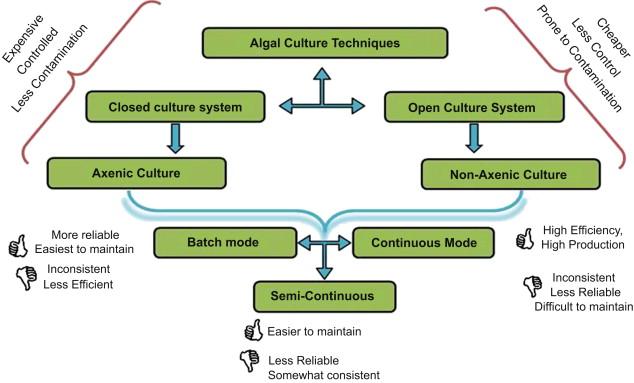 Algal Culturing Techniques Pdf