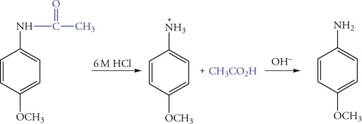 Hydrolysis - an overview | ScienceDirect Topics